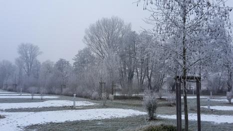 Winterbild1